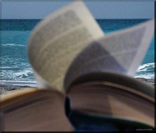 book beach image