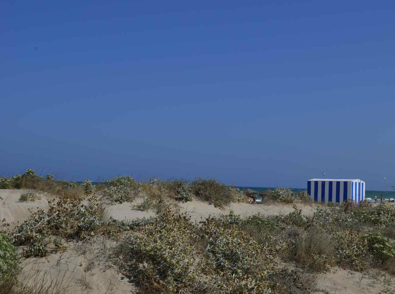 Valencia blog 15