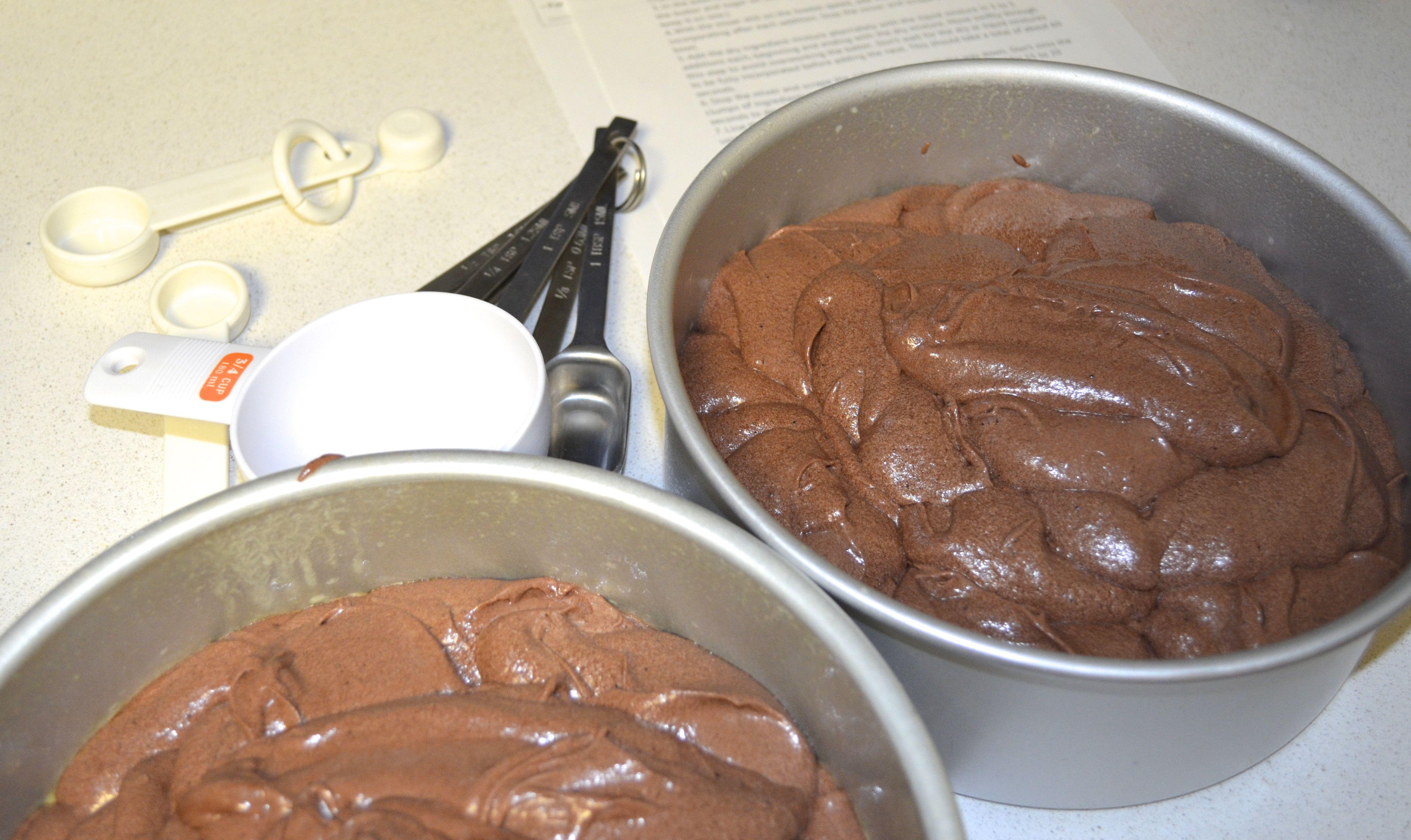 Chocolate cake gelato batter 2
