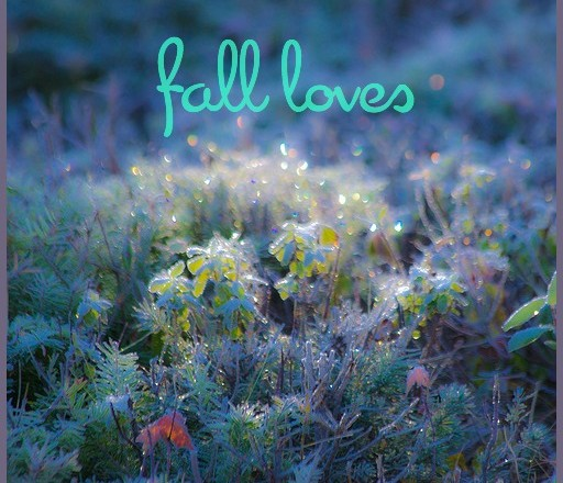 Fall loves @ www.laughlovekiss.com